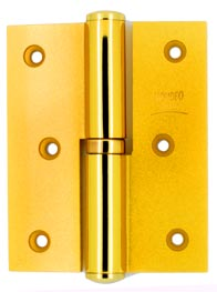 Mondeo Deluxe Hinges 100mm - Brassy Natural Gold Finish